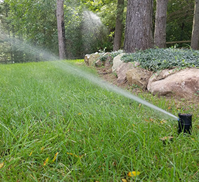 Landscaping & Sprinkler Contractor: Shelby Township | Techseven - image-content-sprinkler